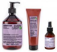Набор для поврежденных волос Dikson Every Green Damaged Hair: шампунь500мл + маска250мл + сыворотка100мл: фото